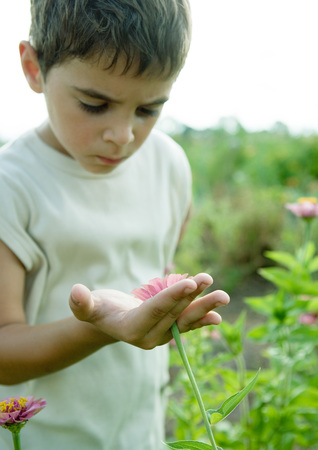 curiousness: Boy looking at flower LANG_EVOIMAGES