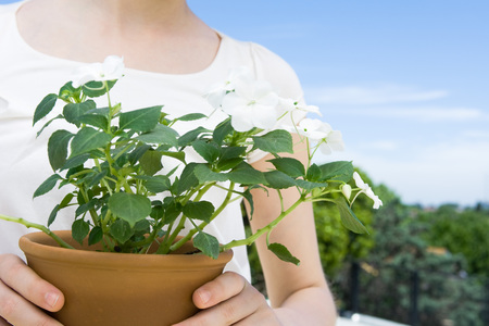Girl holding potted impatiens, cropped view LANG_EVOIMAGES