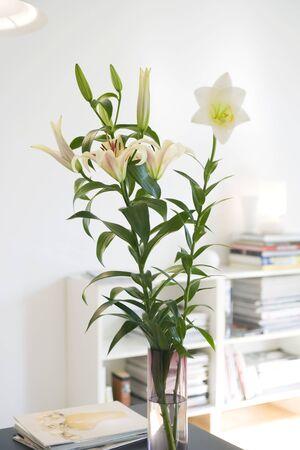 Fresh lilies arranged in vase LANG_EVOIMAGES
