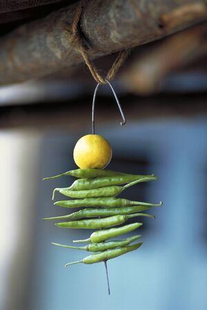 Indian Nimbu Mirchi charm