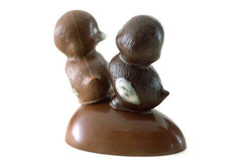 Chocolate chicks