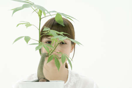 Woman looking through leaves of potted plant, portrait