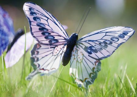 Fake butterflies