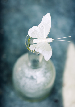 Fake butterfly on top of vase