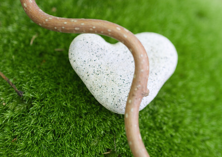 Smooth branch and heart shaped stone on moss LANG_EVOIMAGES