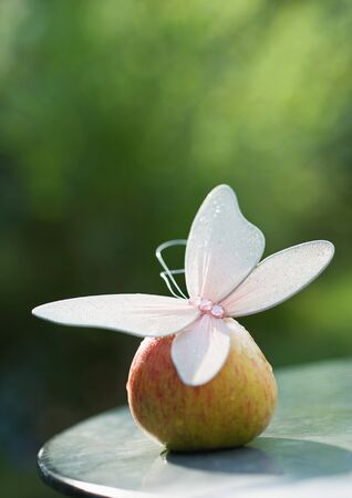 Fake butterfly on top of apple LANG_EVOIMAGES
