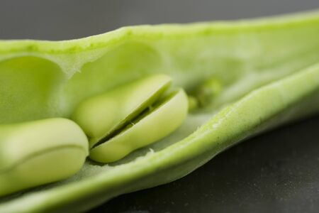 Broad bean bursting open, extreme close-up