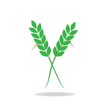 caryopsis: Wheat Green icon Illustration