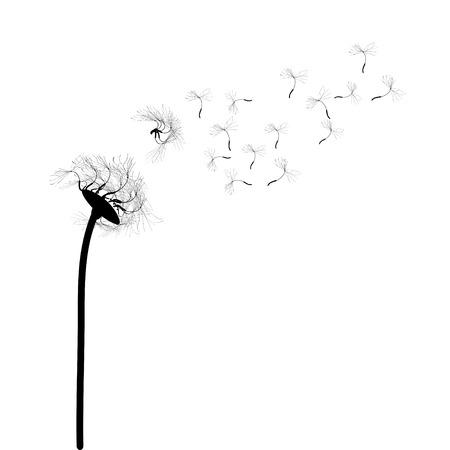 snort: Dandelion Vector