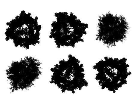 bovenaanzicht plant: Tree top silhouetten