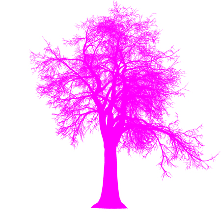tree leafless side view silhouette isolated - purple - vector illustration