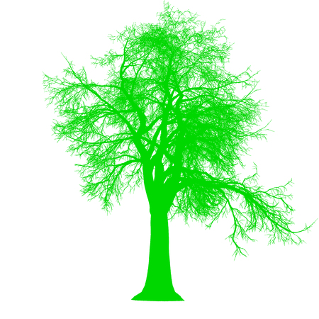 tree leafless side view silhouette isolated - green - vector illustration Illustration