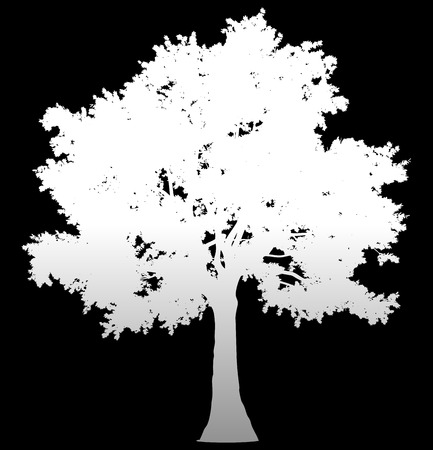Tree profile silhouette isolated