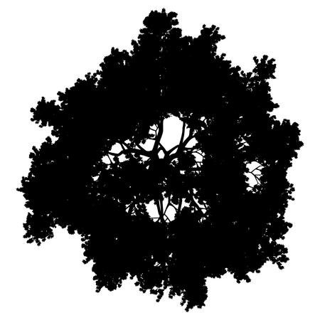 Sylwetka szczyt drzewa na białym tle - czarny prosty szczegółowy - ilustracja wektorowa