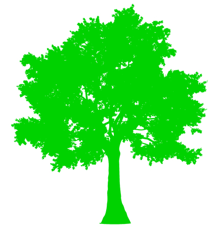 Tree profile silhouette isolated - green simple detailed - vector illustration