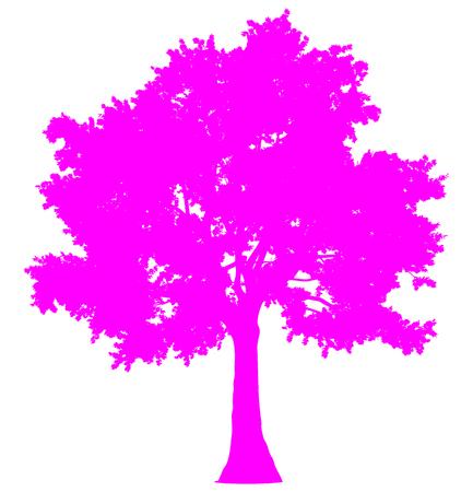 Tree profile silhouette isolated - purple simple detailed - vector illustration Illustration