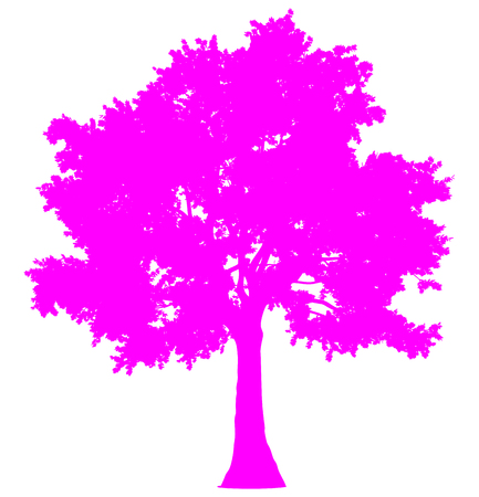 Tree profile silhouette isolated - purple simple detailed - vector illustration  イラスト・ベクター素材