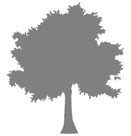 Tree profile silhouette isolated - medium gray simple detailed - vector illustration Illustration