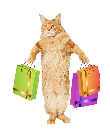 Red Maine Coon cat with gift bags on a white background