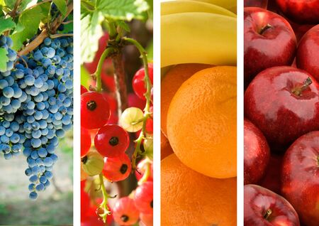 Collage photo fruits and berries