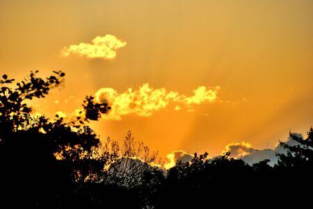 Late afternoom orange sky