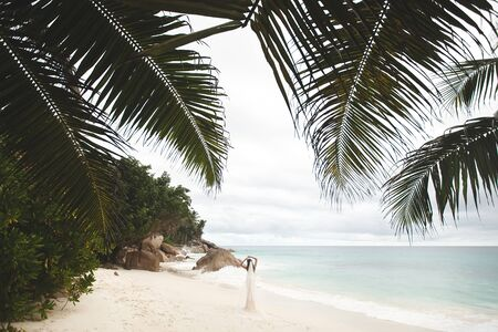 Bride on the beach. Rocks and palm trees