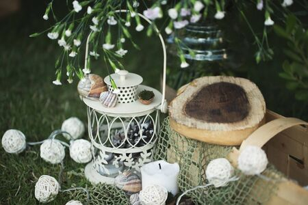 Rustic wedding decor made of wood, shells and net.