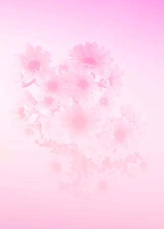 colour: Flower with sweet filter