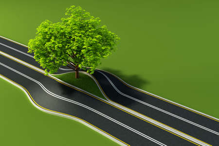 sublime: big tree growth in the middle of road Stock Photo