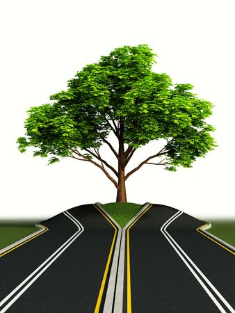 big tree growth in the middle of road photo