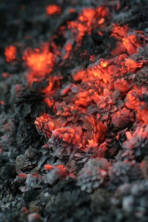 smolder: smolder coals with small depth of focus