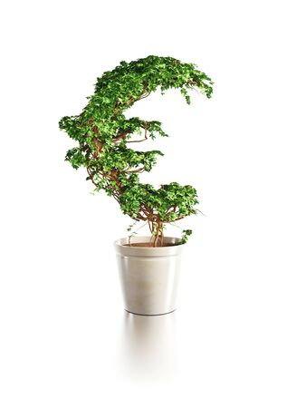 money making: growing euro tree isolated 3d render