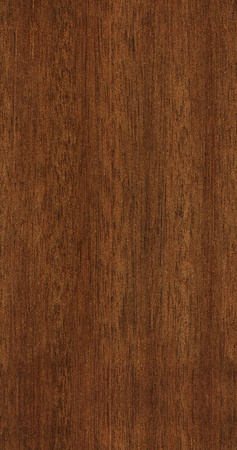seamless teak texture photo