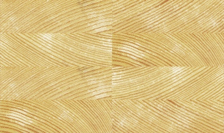 seamless pine texture Stock Photo - 11298841