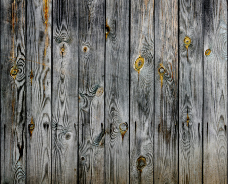 knotted: old knotted wooden planks texture
