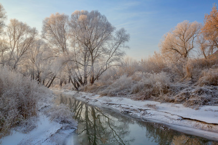 fog white: snow landscape with frosted trees and river