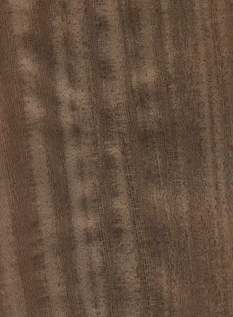 Natural wooden texture background. Lati wood.