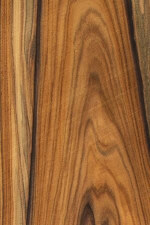 Natural wooden texture background. rosewood wood