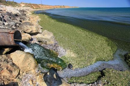 contaminacion del agua: Medio ambiente Contaminación tubo de drenaje descarga de productos del mar en la cintura Foto de archivo