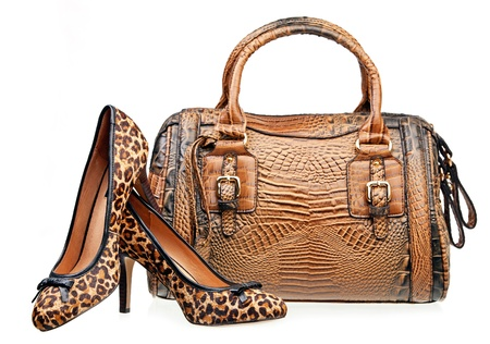 leopard: Pair of women shoes and handbag isolated over white