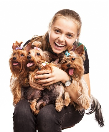 Cute young girl holding Yorkshire terrier dogs on her lap over white  photo
