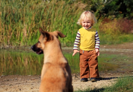 stray dog: Little boy looking at a dog outdoors
