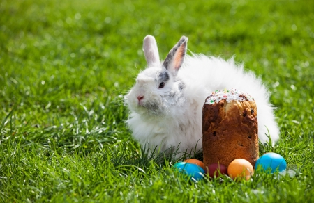 Easter bunny behind Easter cake and painted eggs photo