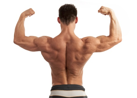 body builder: Rear view of a young man flexing his arm and back muscles over white background Stock Photo