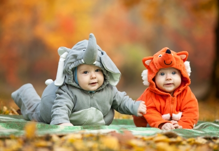 Two baby boys dressed in animal costumes in autumn park, focus on baby in elephant costume photo
