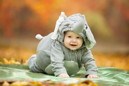 Baby boy dressed in elephant costume in autumn park