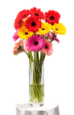 closeup of pink daisy with: Gerbera flowers in vase isolated on white  Stock Photo
