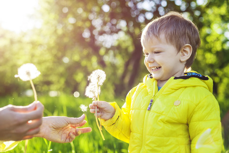 kids hand: Cute toddler boy making a with before blowing dried dandelions in mothers hands