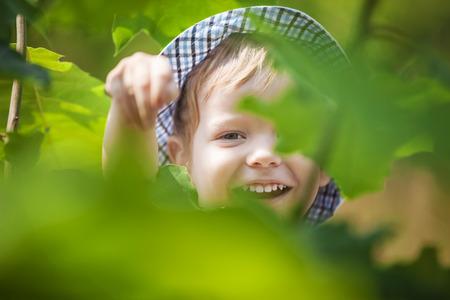 joy: Joyful little boy in summer park Stock Photo