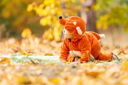 jungle boy: Cute baby boy dressed in fox costume in autumn park